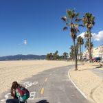 skateboarding-2209963_1280